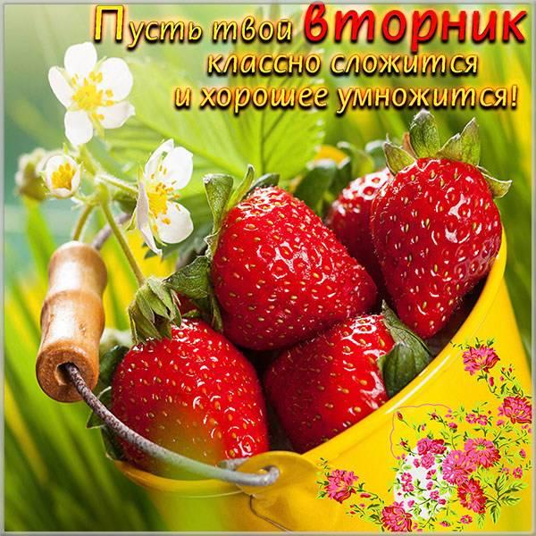 Открытка с добрым днем вторника - скачать бесплатно на otkrytkivsem.ru