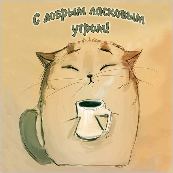 Открытка с добрым ласковым утром - скачать бесплатно на otkrytkivsem.ru