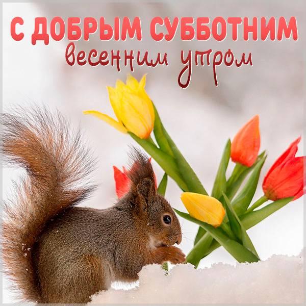 Открытка с добрым субботним весенним утром - скачать бесплатно на otkrytkivsem.ru