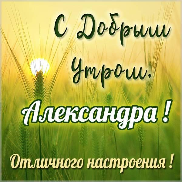 Открытка с добрым утром Александра - скачать бесплатно на otkrytkivsem.ru