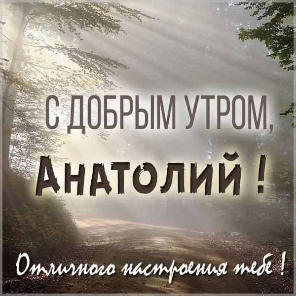 Открытка с добрым утром Анатолий - скачать бесплатно на otkrytkivsem.ru