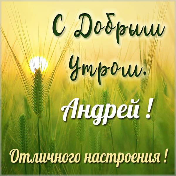 Открытка с добрым утром Андрей - скачать бесплатно на otkrytkivsem.ru