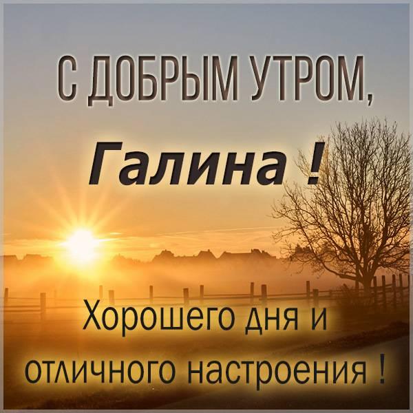 Открытка с добрым утром Галина - скачать бесплатно на otkrytkivsem.ru