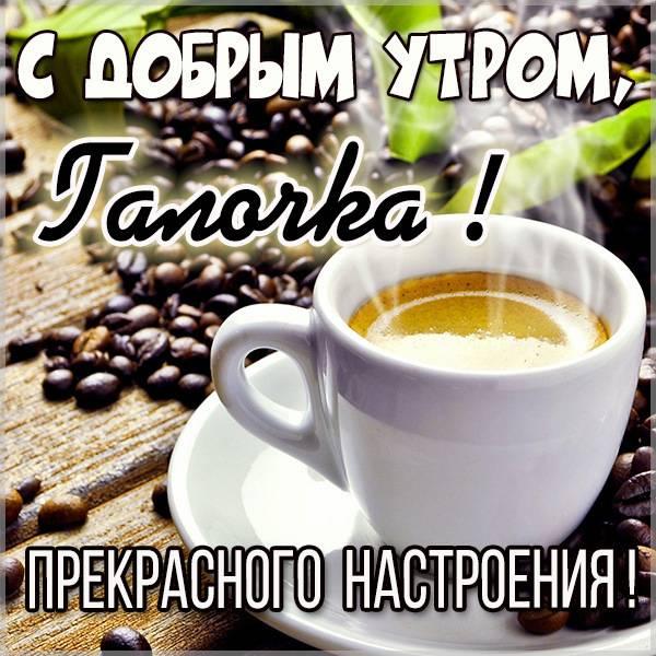 Открытка с добрым утром Галочка - скачать бесплатно на otkrytkivsem.ru