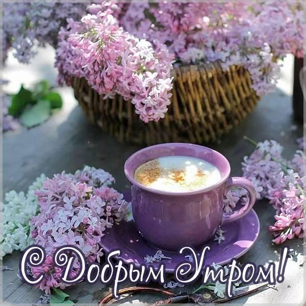 Открытка с добрым утром и чашечкой кофе - скачать бесплатно на otkrytkivsem.ru