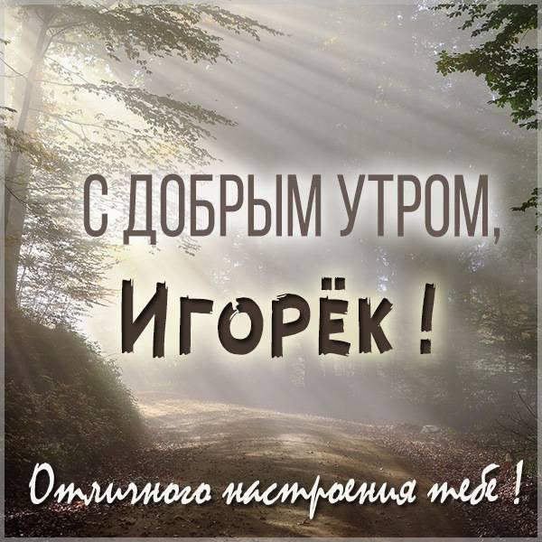 Открытка с добрым утром Игорек - скачать бесплатно на otkrytkivsem.ru
