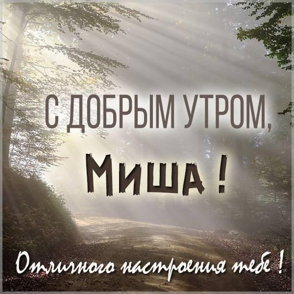 Открытка с добрым утром Миша - скачать бесплатно на otkrytkivsem.ru