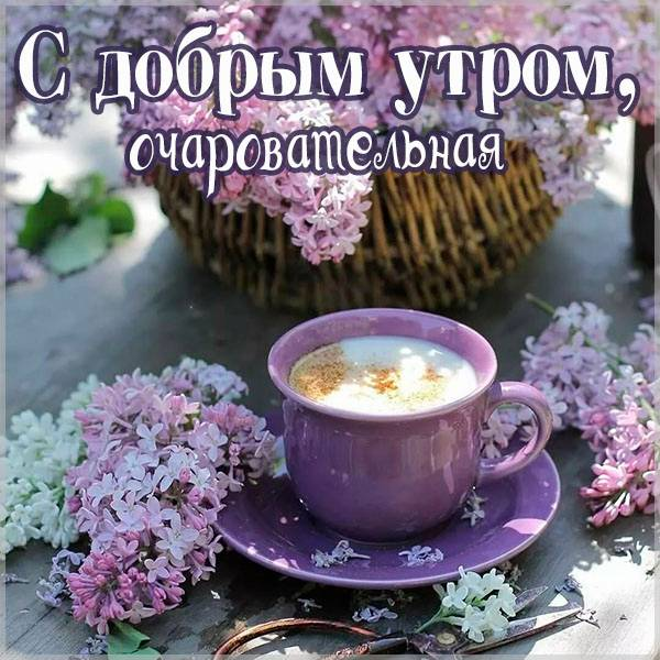 Открытка с добрым утром прикольная девушке фото - скачать бесплатно на otkrytkivsem.ru