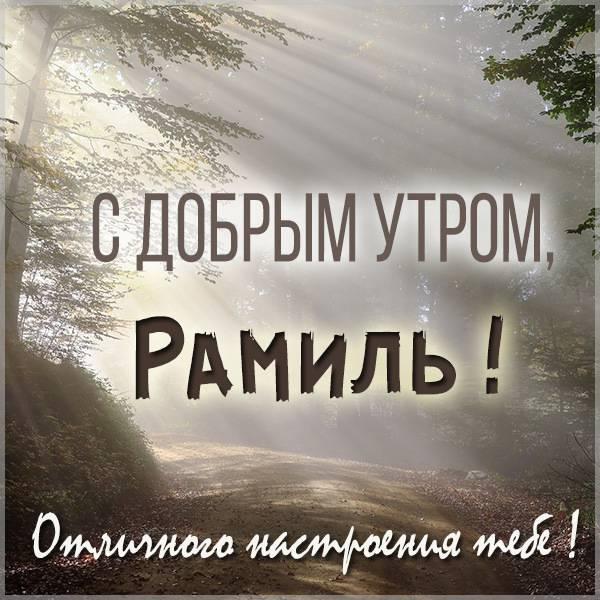 Открытка с добрым утром Рамиль - скачать бесплатно на otkrytkivsem.ru