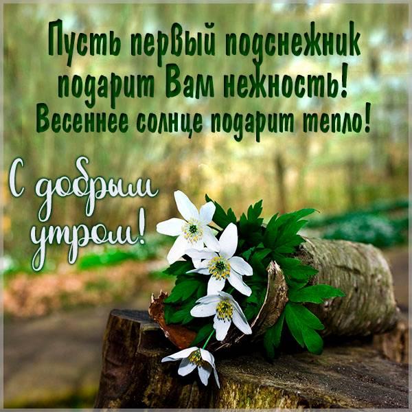Открытка с добрым утром с весенними цветами - скачать бесплатно на otkrytkivsem.ru
