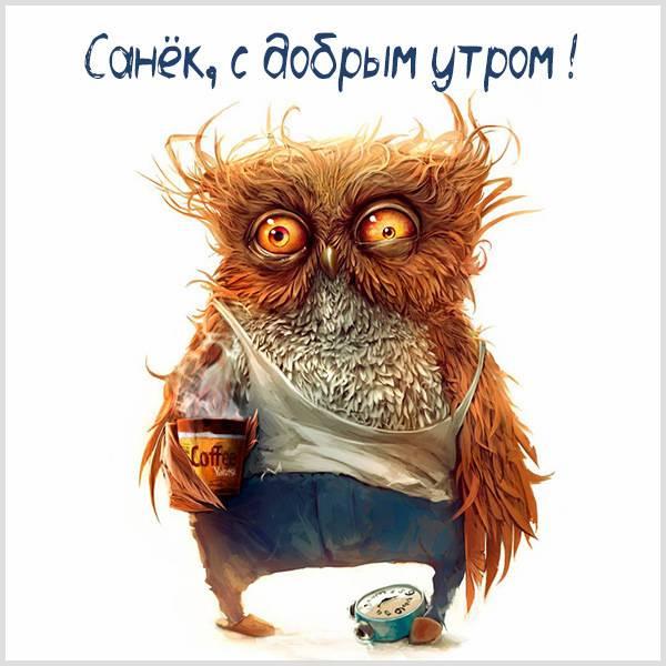 Открытка с добрым утром Санек - скачать бесплатно на otkrytkivsem.ru