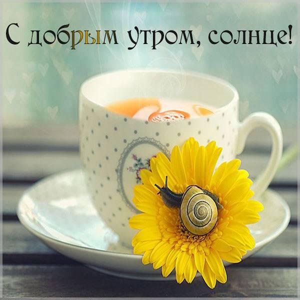 Открытка с добрым утром солнце - скачать бесплатно на otkrytkivsem.ru