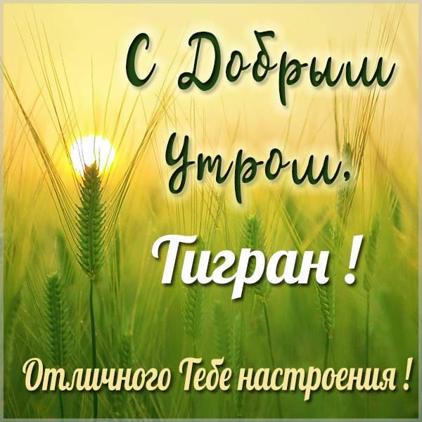 Открытка с добрым утром Тигран - скачать бесплатно на otkrytkivsem.ru