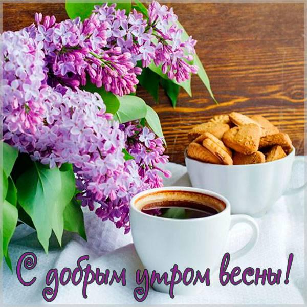 Открытка с добрым утром весны - скачать бесплатно на otkrytkivsem.ru
