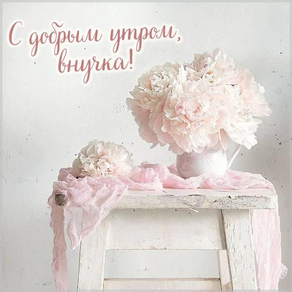 Открытка с добрым утром внучка - скачать бесплатно на otkrytkivsem.ru