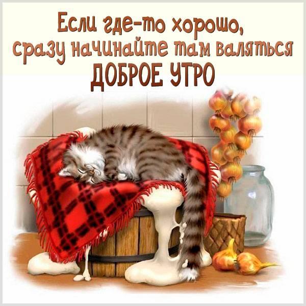 Открытка с добрым утром женщине с приколом - скачать бесплатно на otkrytkivsem.ru