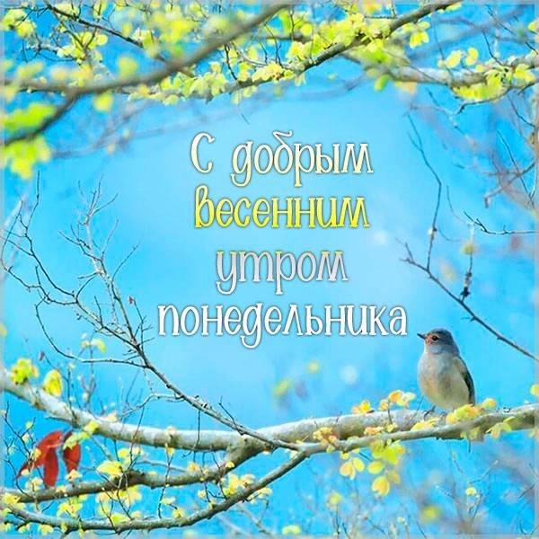 Открытка с добрым весенним утром понедельника - скачать бесплатно на otkrytkivsem.ru