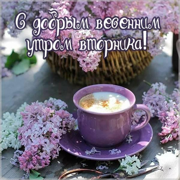 Открытка с добрым весенним утром вторника - скачать бесплатно на otkrytkivsem.ru