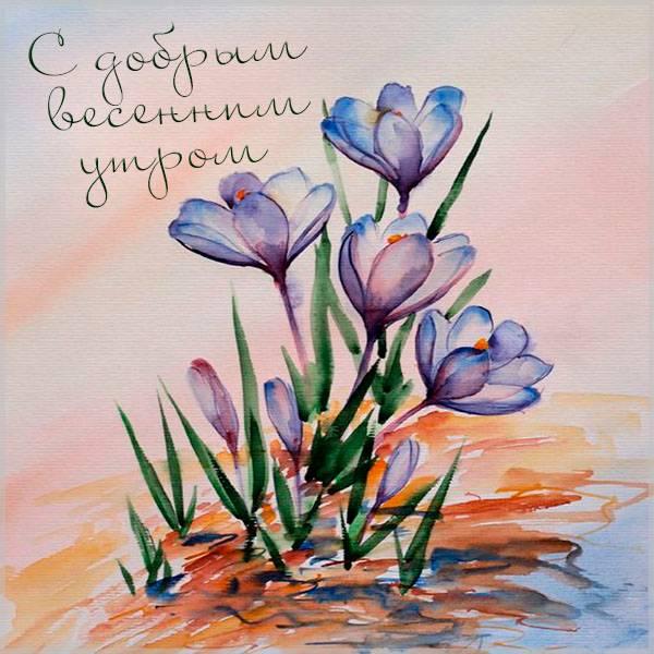 Открытка с добрым весенним утром - скачать бесплатно на otkrytkivsem.ru