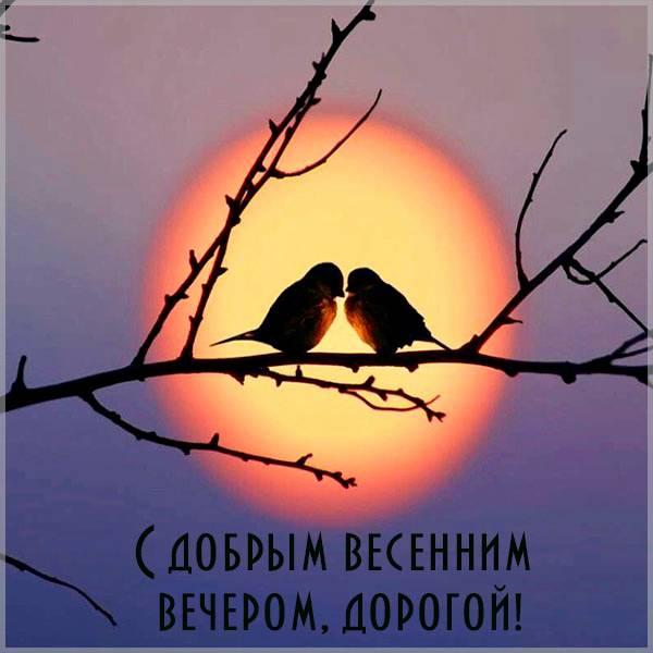 Открытка с добрым весенним вечером мужчине - скачать бесплатно на otkrytkivsem.ru