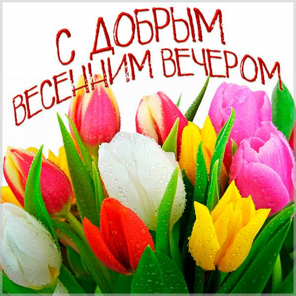 Открытка с добрым весенним вечером женщине - скачать бесплатно на otkrytkivsem.ru