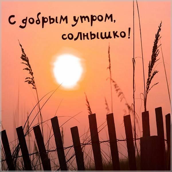 Открытка с надписью с добрым утром солнышко - скачать бесплатно на otkrytkivsem.ru