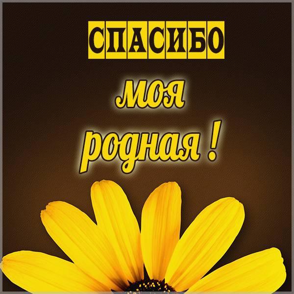 Открытка с надписью спасибо моя родная - скачать бесплатно на otkrytkivsem.ru