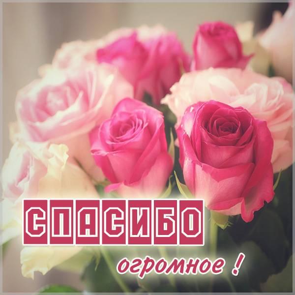 Открытка с надписью спасибо огромное - скачать бесплатно на otkrytkivsem.ru