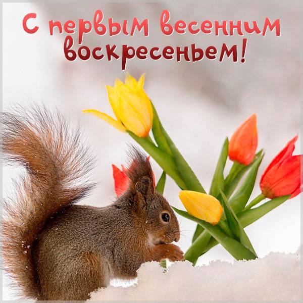 Открытка с первым весенним воскресеньем - скачать бесплатно на otkrytkivsem.ru