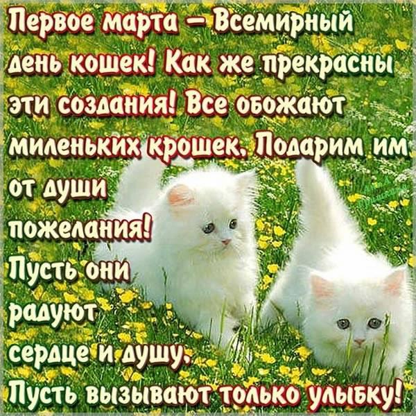 Открытка с поздравлением с днем кошек - скачать бесплатно на otkrytkivsem.ru