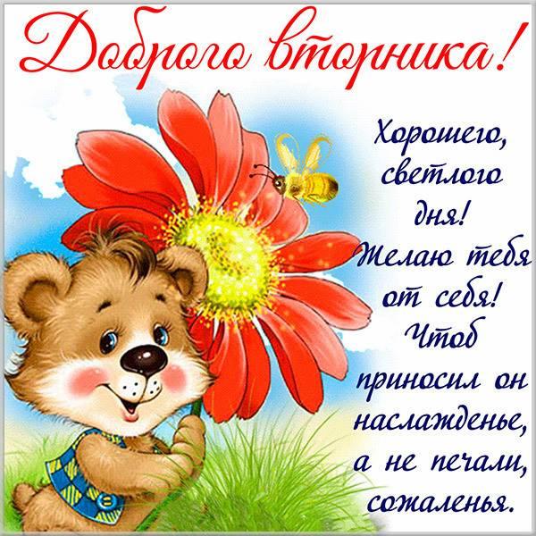 Открытка с пожеланием доброго вторника - скачать бесплатно на otkrytkivsem.ru