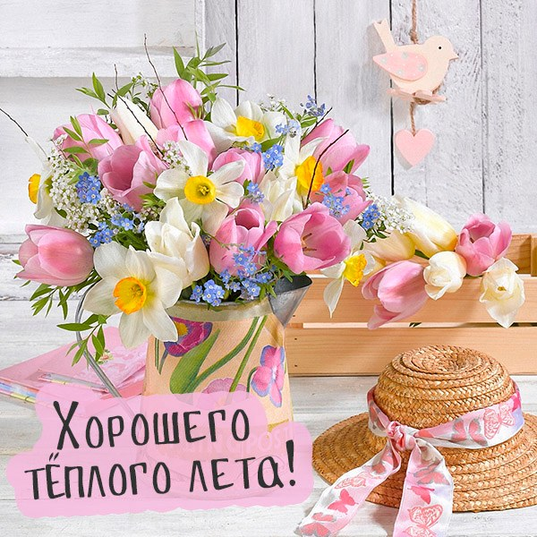 Открытка с пожеланием хорошего лета - скачать бесплатно на otkrytkivsem.ru