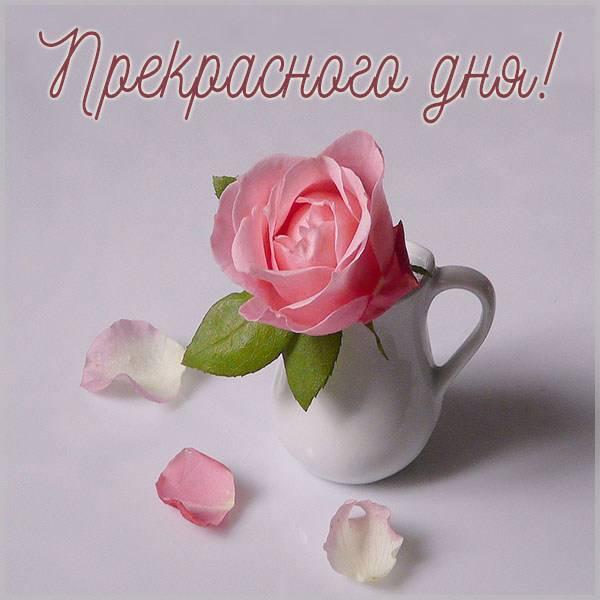 Открытка с пожеланием прекрасного дня - скачать бесплатно на otkrytkivsem.ru