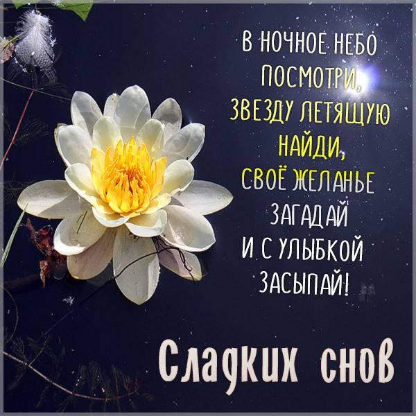 Открытка с пожеланием сладких снов - скачать бесплатно на otkrytkivsem.ru