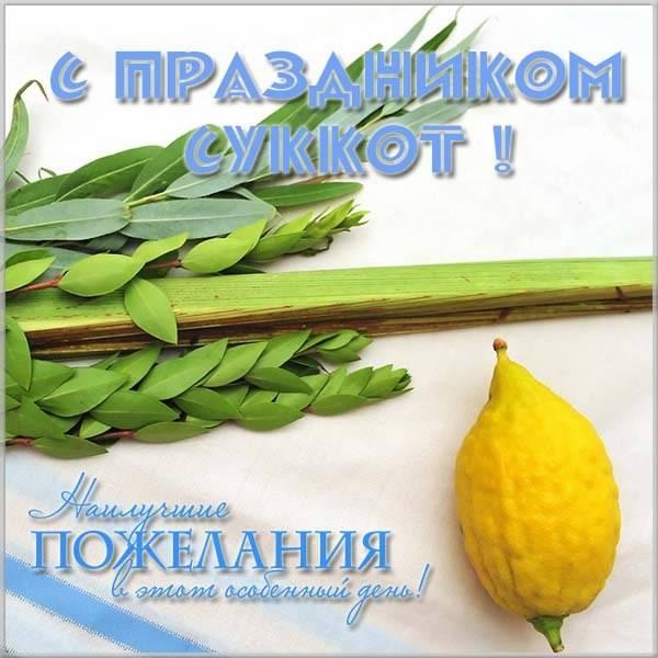 Открытка с праздником Суккот - скачать бесплатно на otkrytkivsem.ru