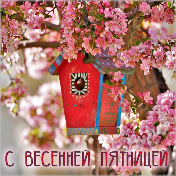 Открытка с весенней пятницей - скачать бесплатно на otkrytkivsem.ru