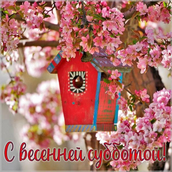 Открытка с весенней субботой - скачать бесплатно на otkrytkivsem.ru