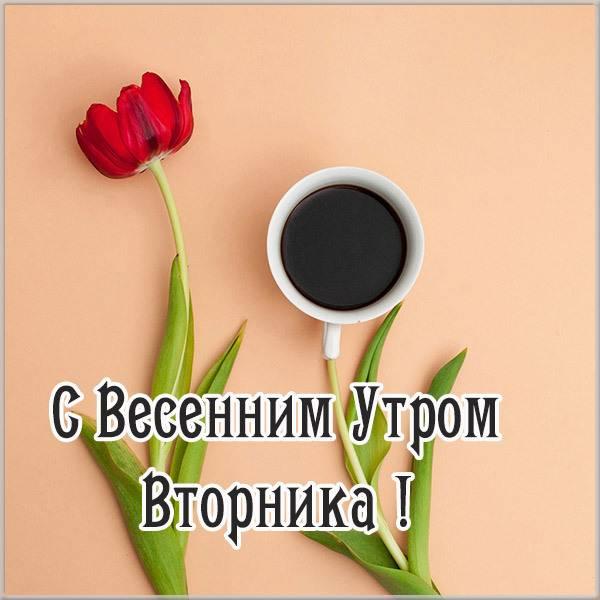 Открытка с весенним утром вторника - скачать бесплатно на otkrytkivsem.ru