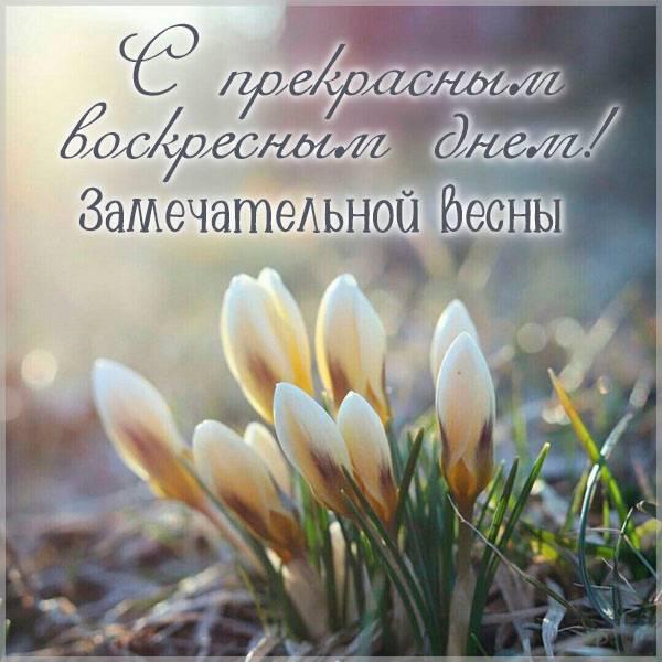 Открытка с весенним воскресным днем - скачать бесплатно на otkrytkivsem.ru