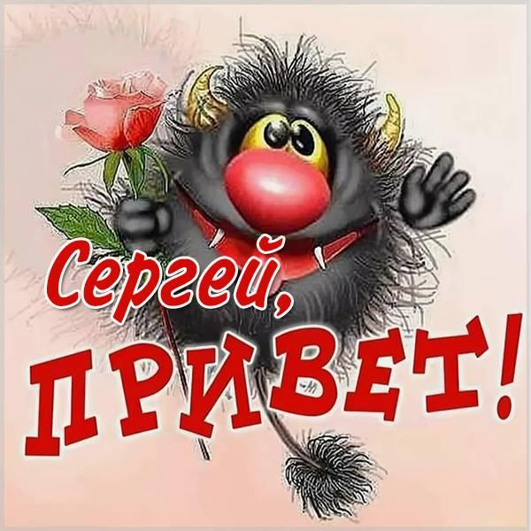 Открытка Сергею с приветом - скачать бесплатно на otkrytkivsem.ru