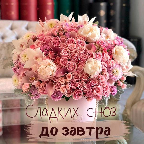 Открытка сладких снов до завтра - скачать бесплатно на otkrytkivsem.ru