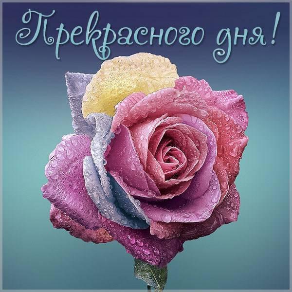 Открытка со словами прекрасного дня - скачать бесплатно на otkrytkivsem.ru