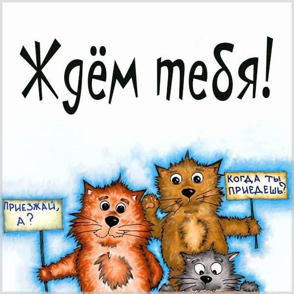 Открытка со словами ждем тебя - скачать бесплатно на otkrytkivsem.ru