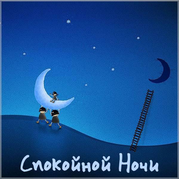 Открытка со спокойной ночи летняя - скачать бесплатно на otkrytkivsem.ru
