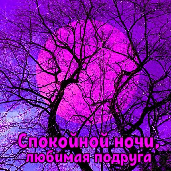 Открытка со спокойной ночи подруге - скачать бесплатно на otkrytkivsem.ru