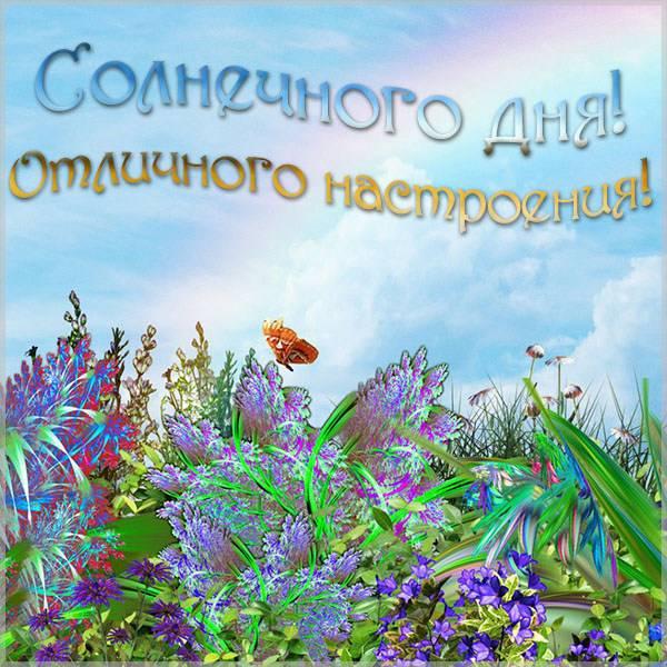 Открытка солнечного дня и отличного настроения - скачать бесплатно на otkrytkivsem.ru