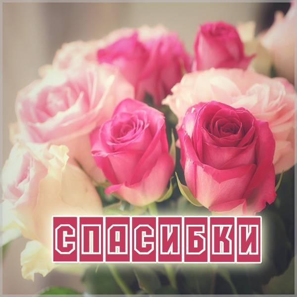 Открытка спасибки картинка - скачать бесплатно на otkrytkivsem.ru