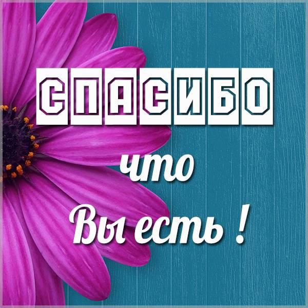 Открытка спасибо что вы есть - скачать бесплатно на otkrytkivsem.ru