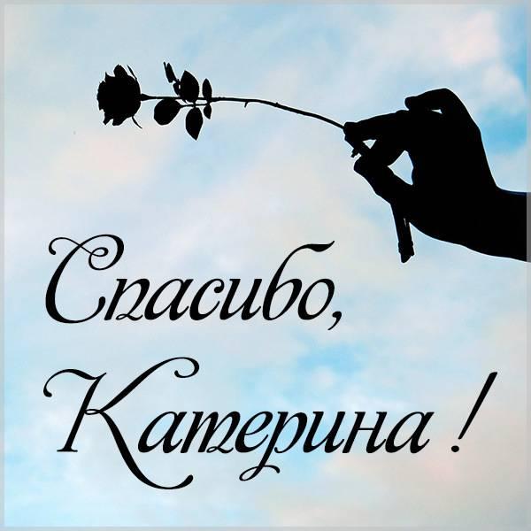 Открытка спасибо Катерина - скачать бесплатно на otkrytkivsem.ru