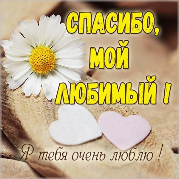 Открытка спасибо любимому мужчине - скачать бесплатно на otkrytkivsem.ru